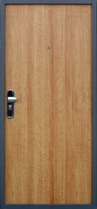Strongdoor Plus